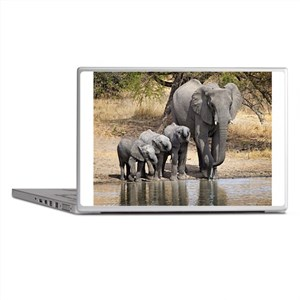 Elephant mom and babies Laptop Skins
