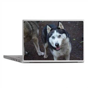 Blue Eyed Husky Laptop Skins
