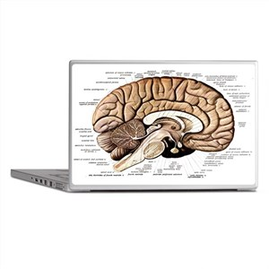 Human Brain Laptop Skins