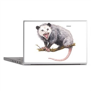 Opossum Possum Animal Laptop Skins