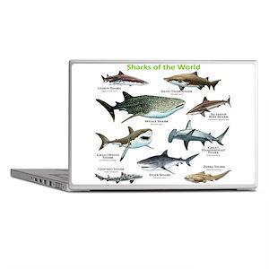 Sharks of the World Laptop Skins