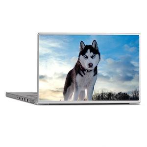 Husky Dog Outdoors Laptop Skins