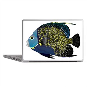 French Angelfish v Laptop Skins