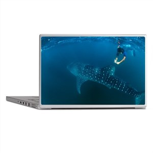 Whale shark and snorkeler - Laptop Skins