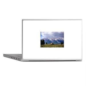 Grand Tetons National Park Laptop Skins