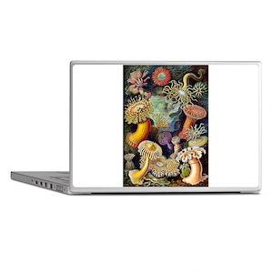 Antique 1904 Sea Anemone Nature Print Laptop Skins