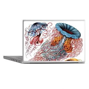 Haeckel Jellyfish Laptop Skins