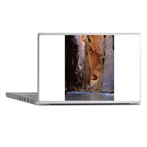 Zion Ntional Park Laptop Skins