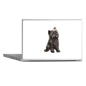 Brindle Cairn (#14) Laptop Skins