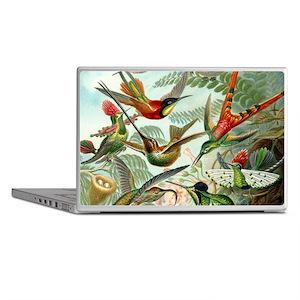 Beautiful Hummingbirds Art Laptop Skins