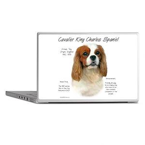 Cavalier (Blenheim) Laptop Skins