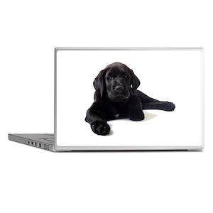 Labrador Retriever Laptop Skins
