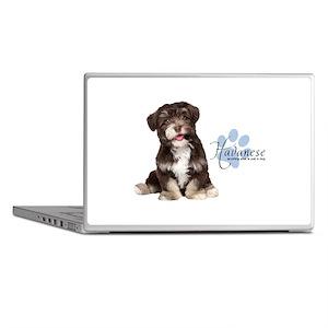 Havanese Puppy Laptop Skins