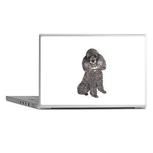 Poodle (Min-Slvr) Laptop Skins