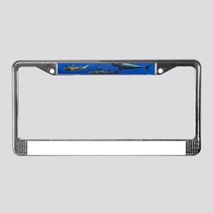 Shark Gathering License Plate Frame