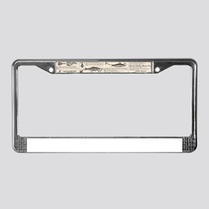 Fishing Lures Vintage Antique License Plate Frame