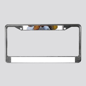 Polished Rocks License Plate Frame