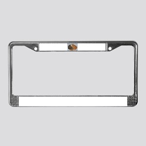 Ball of Cuteness License Plate Frame