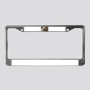 soft coated wheaton terrier 2 License Plate Frame