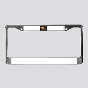 Santa Daisy the Christmas kitt License Plate Frame