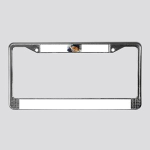 Imitating a sleeping fox License Plate Frame