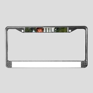 president donald trump License Plate Frame