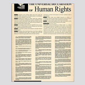 ISHR Human Rights Poster Small Poster