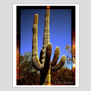 Saguaro against Blue Sky Small Poster