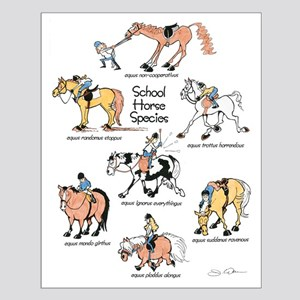 School Horse Species Small Poster