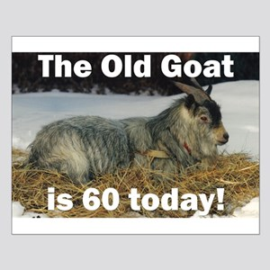 Old Goat is 60 Today Small Poster
