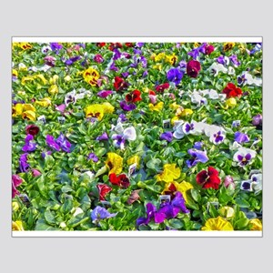 More Pansies Posters