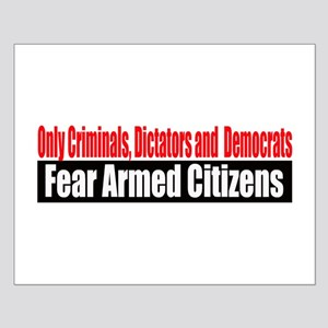 They Fear Armed Citizens Small Poster