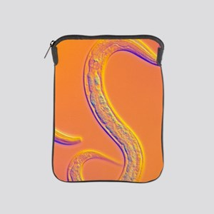 C. elegans worm iPad Sleeve
