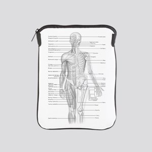 Human Anatomy Chart iPad Sleeve