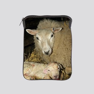 Ewe and new born lamb iPad Sleeve