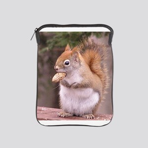 Red Squirrel Eating iPad Sleeve