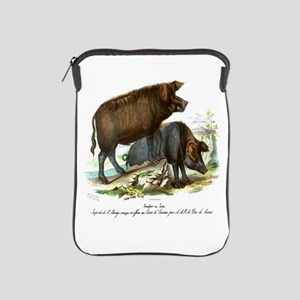 PL1 Pigs iPad Sleeve