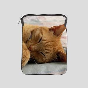 Sweet Dreams iPad Sleeve