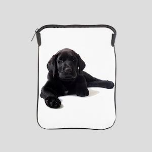 Labrador Retriever iPad Sleeve