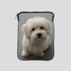coton de tulear puppy iPad Sleeve