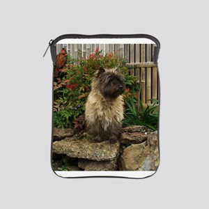 Cairn Terrier iPad Sleeve