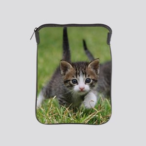 Cat_2015_0102 iPad Sleeve