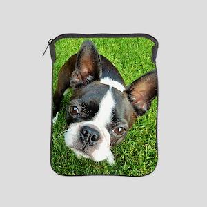 Boston Terrier Gaze iPad Sleeve