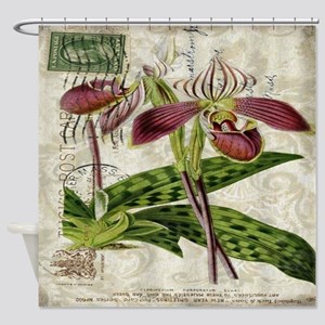 vintage french botanical orchid Shower Curtain