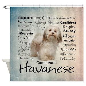 Havanese Traits Shower Curtain