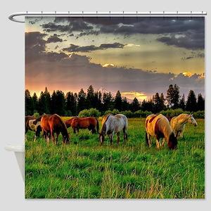 Horses Grazing Shower Curtain
