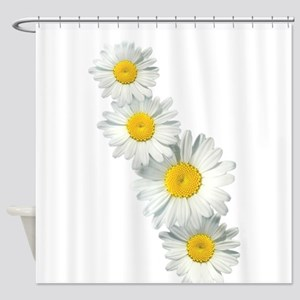 Shasta Daisies Shower Curtain