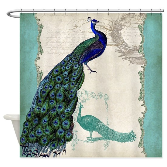 Vintage Peacock Etchings Scroll Swirl Watercolor