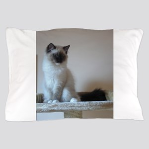 ragdoll Pillow Case