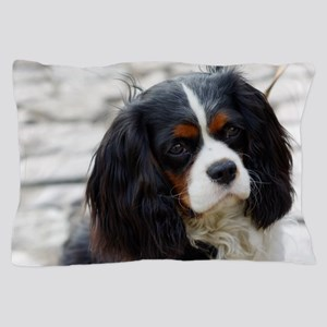 2 cavalier king charles spaniel Pillow Case